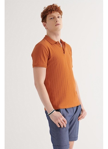 Avva Erkek  Polo Yaka Tişört A11Y1101 Kiremit